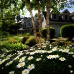 home with flowers, trees, and shrubs