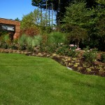wright express, grass, brick, lawn, yard, garden, plant