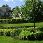 home with gardens and trees