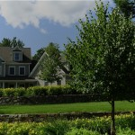 home with stone walls, manicured lawn, and trees