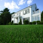 home with manicured lawn