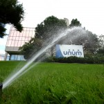 unum, water, grass, ground, yard